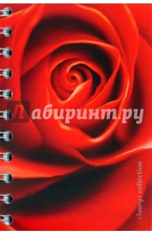 "Тетрадь ""Rose"", 160 листов, А6, клетка (V080760SW)"