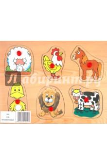 Домашние животные (D82)