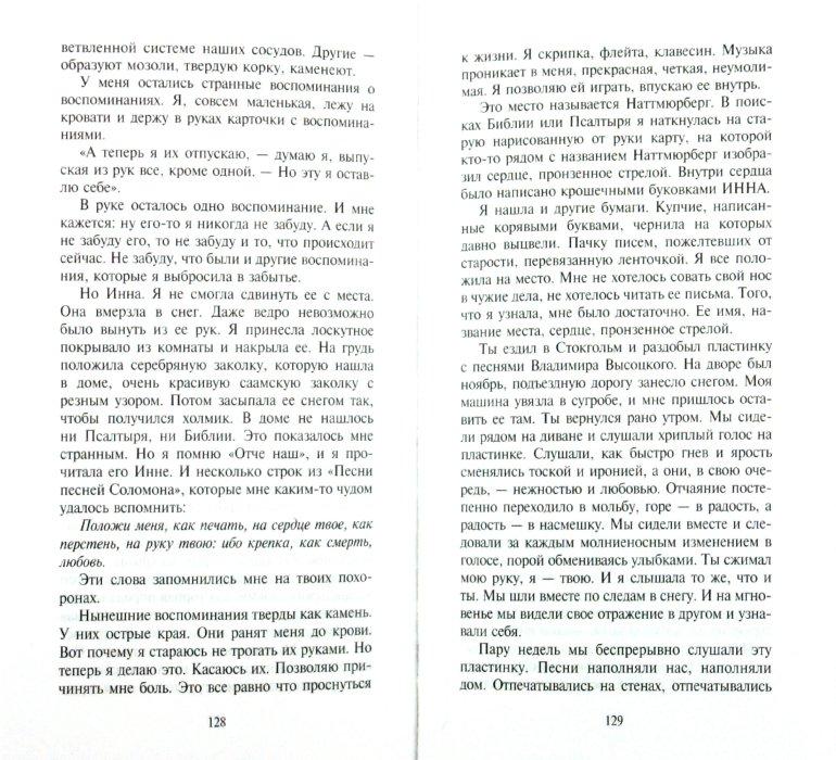 Иллюстрация 1 из 17 для Серебряная Инна - Элисабет Рюнель | Лабиринт - книги. Источник: Лабиринт