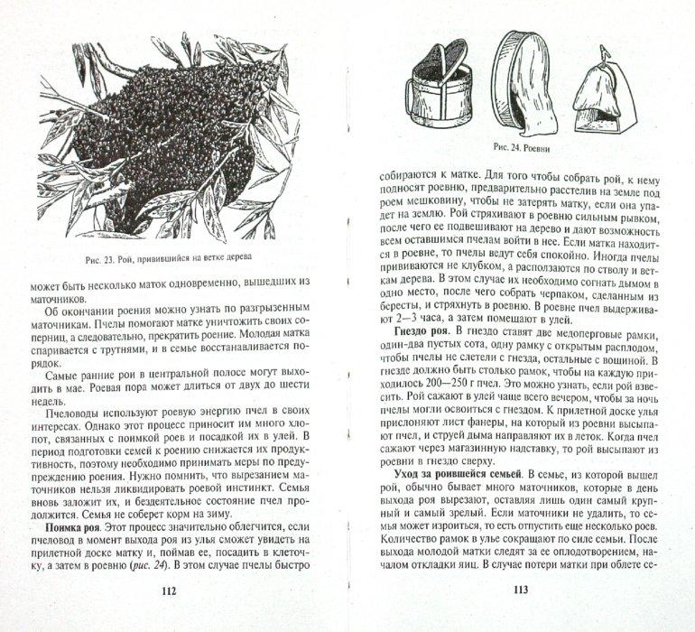Иллюстрация 1 из 15 для Разведение пчел. Продукты пчеловодства - Котова, Воробьев | Лабиринт - книги. Источник: Лабиринт