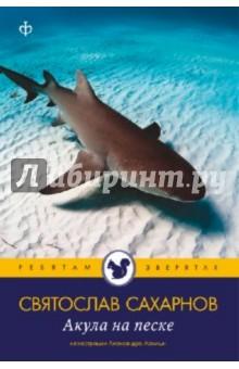 Акула на песке