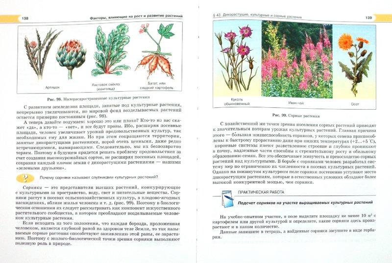 Иллюстрация 1 из 35 для Биология. Растения, бактерии, грибы, лишайники. 6 класс. Учебник - Трайтак, Трайтак | Лабиринт - книги. Источник: Лабиринт
