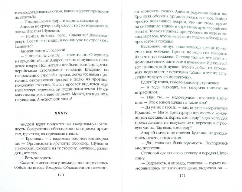 Иллюстрация 1 из 6 для Штрафники против эсэсовцев - Роман Кожухаров | Лабиринт - книги. Источник: Лабиринт