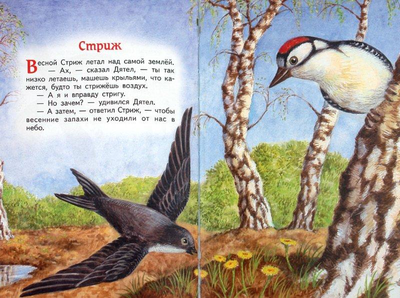 Иллюстрация 1 из 35 для Сказки-малютки - Геннадий Цыферов | Лабиринт - книги. Источник: Лабиринт
