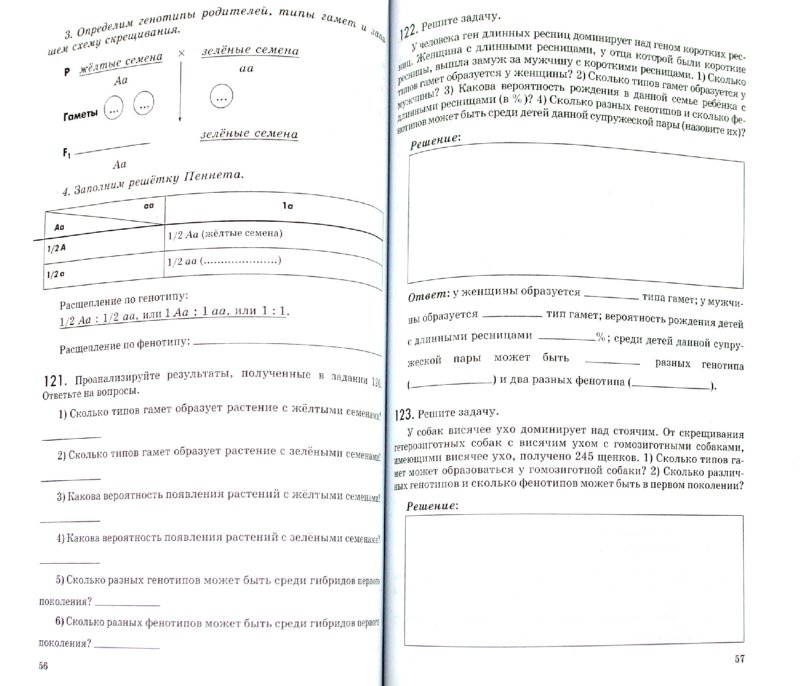 По биологии 6 класс пасечник учебник