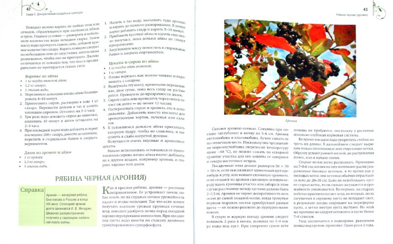 Иллюстрация 1 из 23 для Шесть соток радуют и кормят. Дизайн дачного участка - Галина Кизима | Лабиринт - книги. Источник: Лабиринт