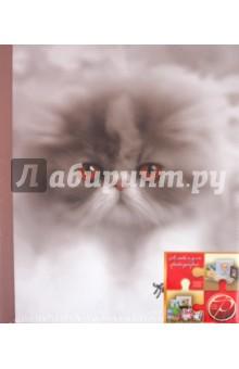 "Фотоальбом 40 магнитных страниц ""Fluffy kittens"" (11615  LM-SA20/11615)"