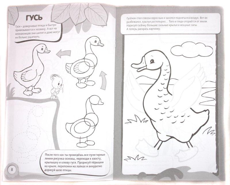 Иллюстрация 1 из 17 для Рисуем и раскрашиваем домашних животных. 6+ | Лабиринт - книги. Источник: Лабиринт