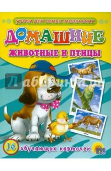Обучающие карточки. Домашние животные и птицы