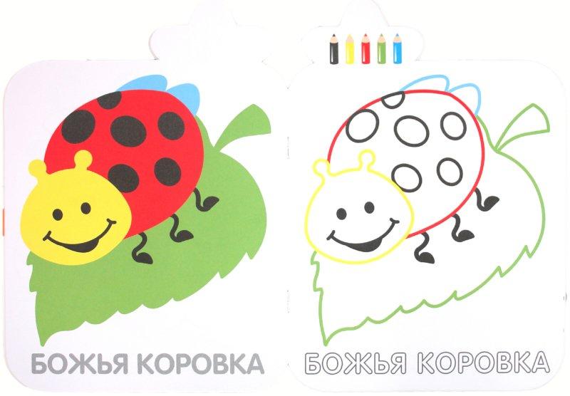 Иллюстрация 1 из 21 для Коллекция малыша. Птичка | Лабиринт - книги. Источник: Лабиринт