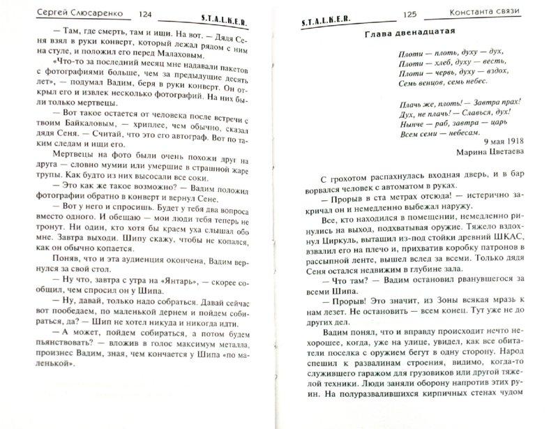 Иллюстрация 1 из 9 для Константа связи - Сергей Слюсаренко | Лабиринт - книги. Источник: Лабиринт