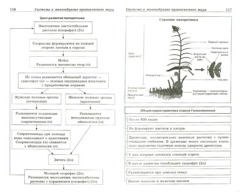 Биология в схемах и таблицах терминах