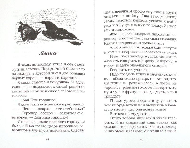 Иллюстрация 1 из 8 для Про больших и маленьких - Евгений Чарушин   Лабиринт - книги. Источник: Лабиринт