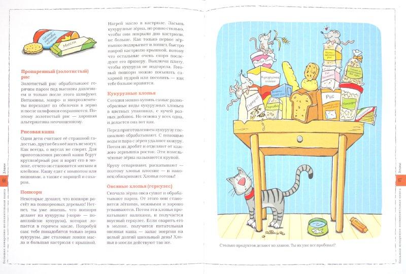 Иллюстрация 1 из 23 для Маленький повар - Флото-Штаммен, Вагнер | Лабиринт - книги. Источник: Лабиринт