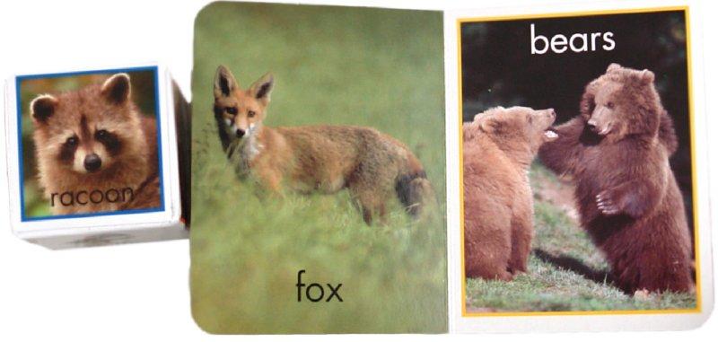 Иллюстрация 1 из 14 для Учим названия животных   Лабиринт - книги. Источник: Лабиринт