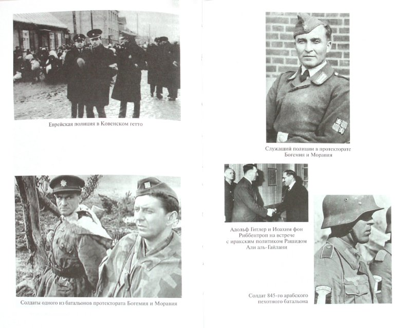Иллюстрация 1 из 31 для Иностранные формирования Третьего рейха - Дробязко, Романько, Семенов | Лабиринт - книги. Источник: Лабиринт