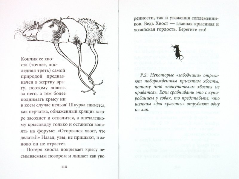 Иллюстрация 1 из 11 для Крысявки. Крысиное житие в байках и картинках - Ольга Громыко | Лабиринт - книги. Источник: Лабиринт