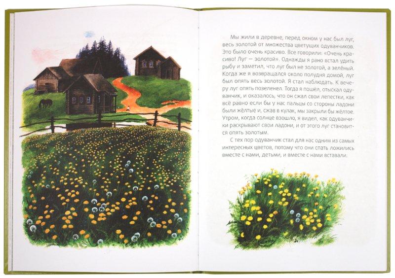 Иллюстрация 1 из 15 для Ребята и утята: рассказы - Михаил Пришвин | Лабиринт - книги. Источник: Лабиринт