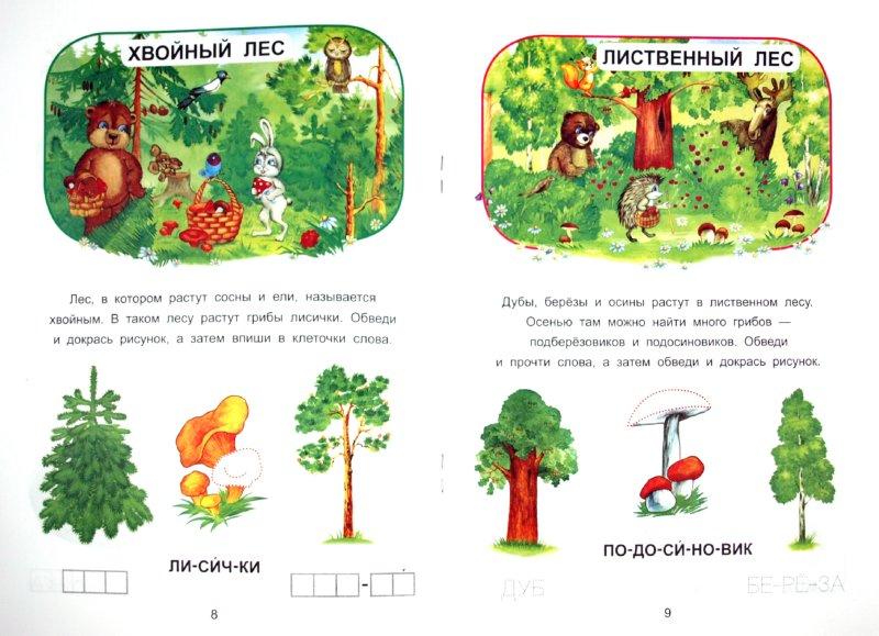 Иллюстрация 1 из 15 для В мире растений - О. Захарова   Лабиринт - книги. Источник: Лабиринт