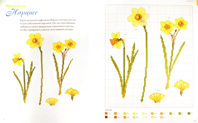 Иллюстрация 1 из 27 для Cадовые цветы, вышитые крестом - Вероник Ажинер | Лабиринт - книги. Источник: Лабиринт