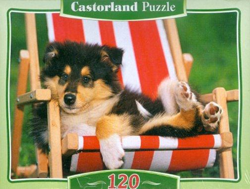 Иллюстрация 1 из 3 для Puzzle, 120 элементов. MIDI Щенок колли (В-12572) | Лабиринт - игрушки. Источник: Лабиринт