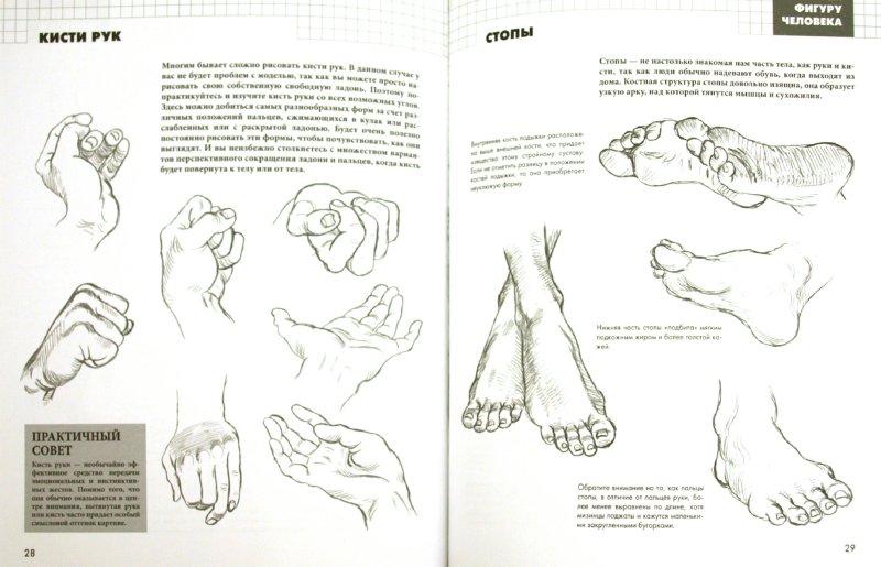 Иллюстрация 1 из 14 для Рисуем фигуру человека - Баррингтон Барбер | Лабиринт - книги. Источник: Лабиринт