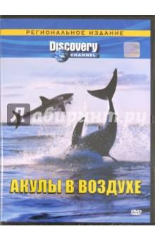 Акулы в воздухе. Региональное издание(DVD)Животный и растительный мир<br>В укромной южноафриканской бухте обитают удивительные акулы, выпрыгивающие высоко из воды, преследуя добычу. Кинооператор Джефф Керр и исследователь Крисс Фоллоус отправляются к печально известному австралийскому Опасному Рифу, чтобы проверить, способны ли на это морские волки и в других уголках земного шара. Вооружившись муляжом морского котика с видеокамерой внутри, эти смельчаки рискнут превратить австралийских акул в воздушных акробатов, хотя некоторые эксперты утверждают, что здешние зубастые охотницы привыкли вести себя совсем по-другому.<br>Производство: США, 2001 год.<br>Язык: Русский<br>Звук: Dolby Digital Surround 2.0<br>Формат: 4:3<br>Изображение: PAL<br>Региональная кодировка: 5<br>Цветной<br>Продолжительность: 45 минут<br>