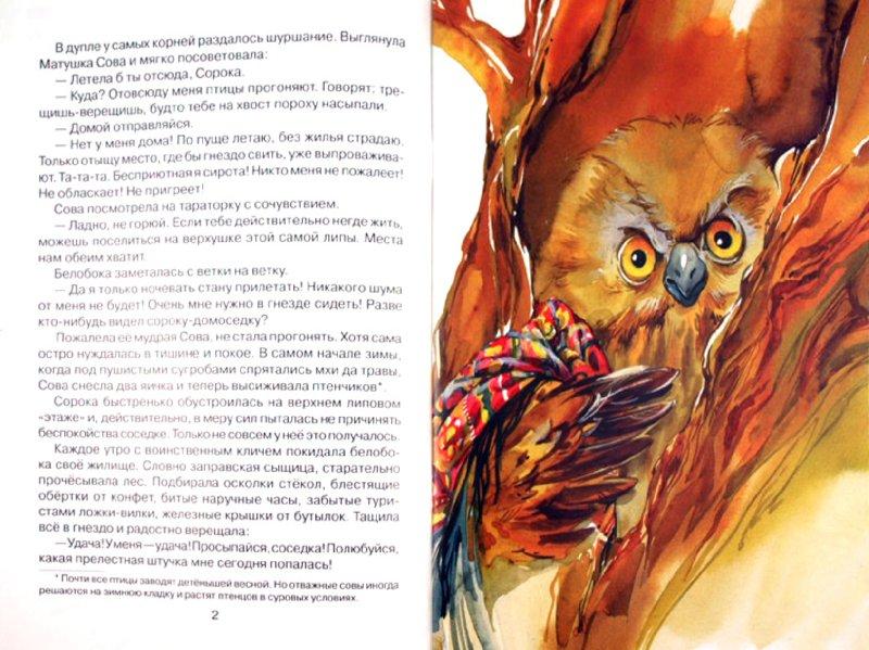 Иллюстрация 1 из 27 для Удачная находка Сороки-белобоки - Светлана Ананич | Лабиринт - книги. Источник: Лабиринт