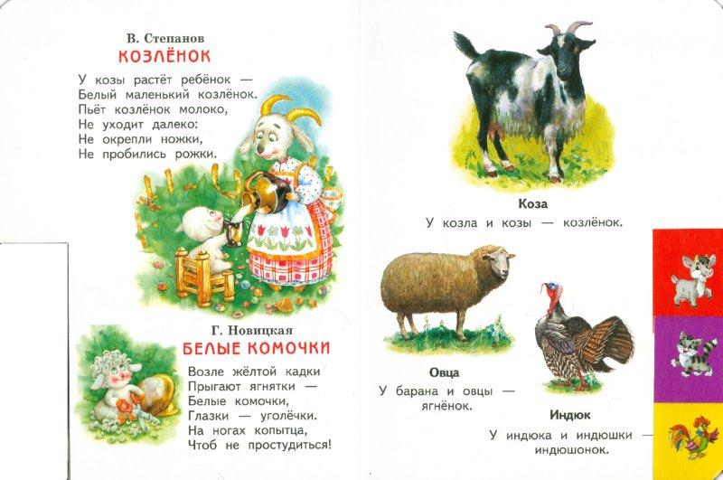Иллюстрация 1 из 9 для Домашние животные | Лабиринт - книги. Источник: Лабиринт