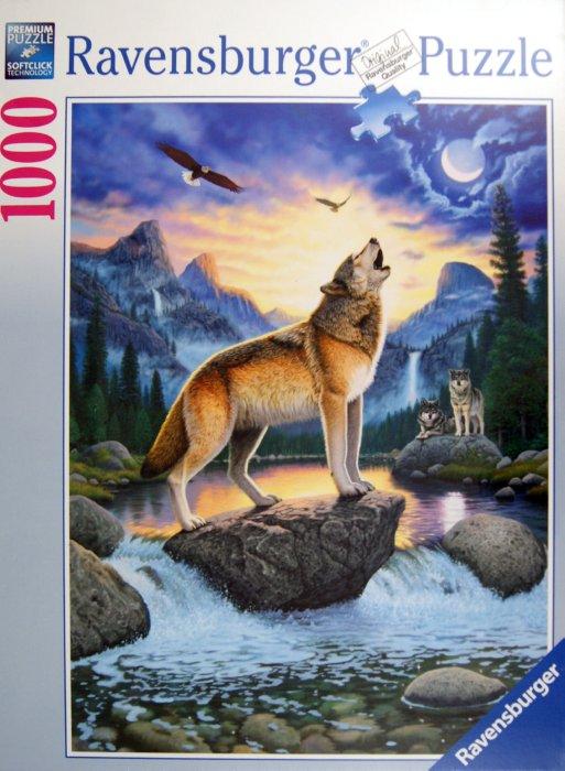 размер волка фото