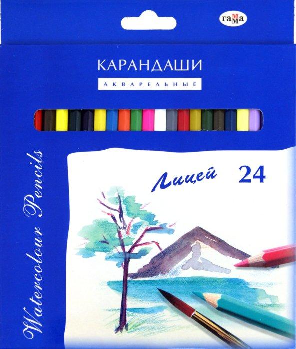 """Иллюстрация 1 из 8 для Карандаши 24 цвета, акварельные """"Лицей"""" (261020)   Лабиринт - канцтовы. Источник: Лабиринт"""