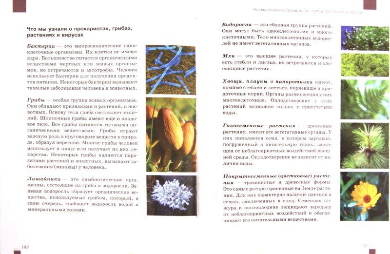 Биология 9 Класс Учебник Мамонтов Захаров Скачать