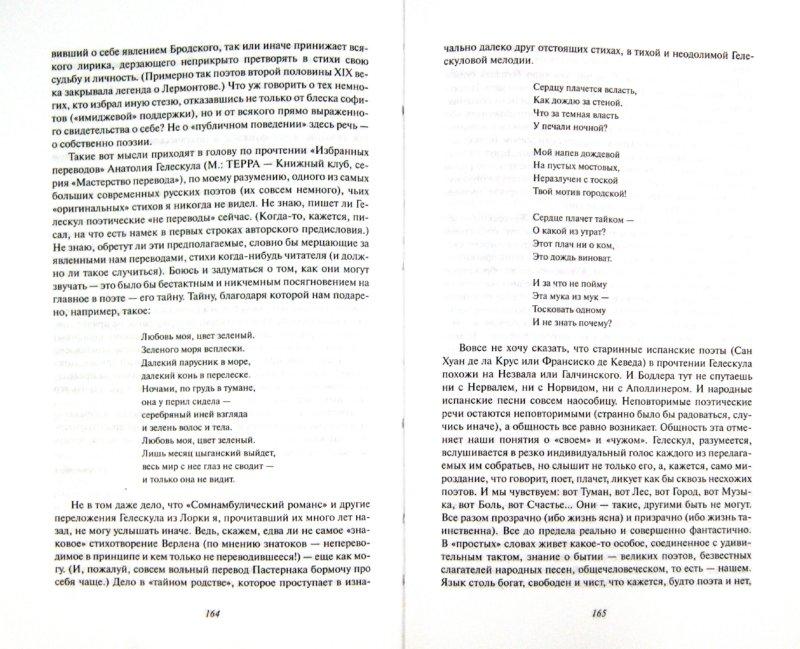 Иллюстрация 1 из 7 для Дневник читателя: Русская литература в 2006 году - Андрей Немзер   Лабиринт - книги. Источник: Лабиринт