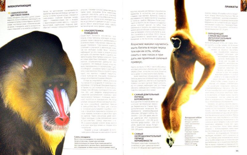 Иллюстрация 1 из 32 для Рекорды животных. Энциклопедия - Марк Карвардин | Лабиринт - книги. Источник: Лабиринт