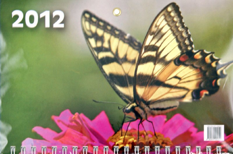 """Иллюстрация 1 из 2 для Настенный квартальный календарь """"Бабочка на цветке"""" на 2012 год   Лабиринт - сувениры. Источник: Лабиринт"""