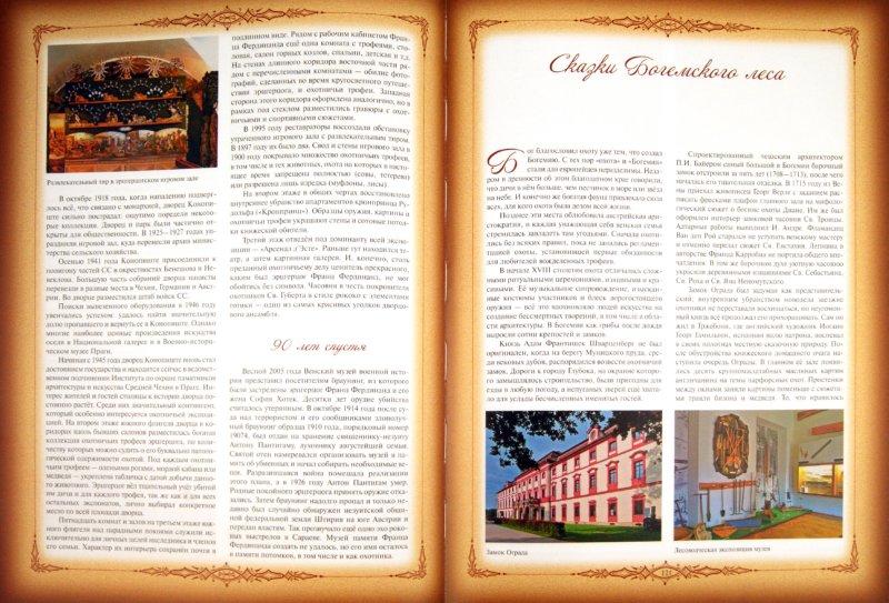Иллюстрация 1 из 6 для Охотничьи музеи Европы - Валерий Панкратов | Лабиринт - книги. Источник: Лабиринт