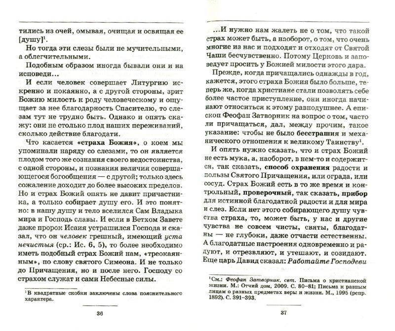 Иллюстрация 1 из 7 для Плоды Святого Причащения - Вениамин Митрополит | Лабиринт - книги. Источник: Лабиринт