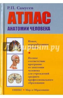 Атлас анатомии человека. Учебное пособие