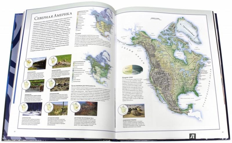 Иллюстрация 1 из 65 для Животный мир. Иллюстрированный атлас - Бамбарадения, Вудрафф, Гинзберг | Лабиринт - книги. Источник: Лабиринт