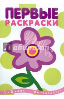 Цветок Карапуз