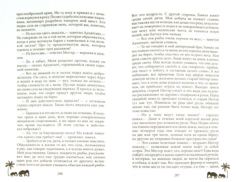 Иллюстрация 1 из 15 для Книга джунглей. Сказки и легенды - Редьярд Киплинг | Лабиринт - книги. Источник: Лабиринт