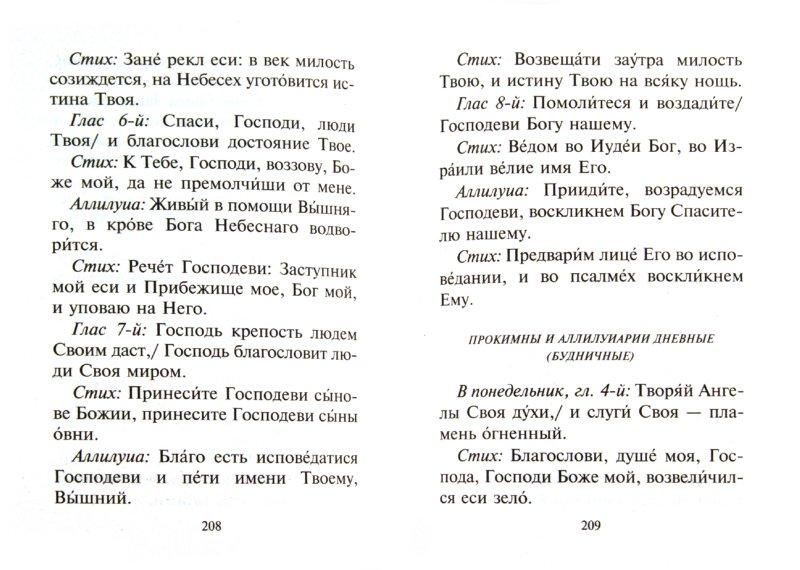 Иллюстрация 1 из 17 для Толковый молитвослов с текстами Литургии и Всенощного бдения | Лабиринт - книги. Источник: Лабиринт