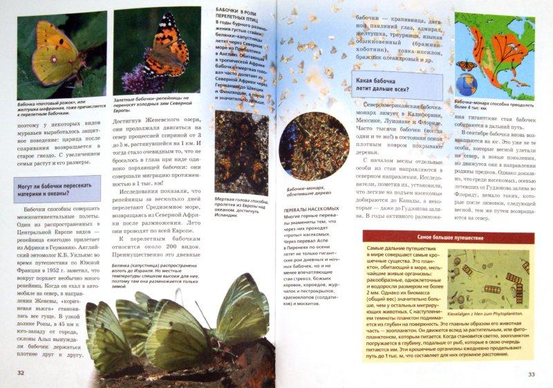 Иллюстрация 1 из 12 для Зачем и почему. Миграции животных - Витус Дрешер | Лабиринт - книги. Источник: Лабиринт