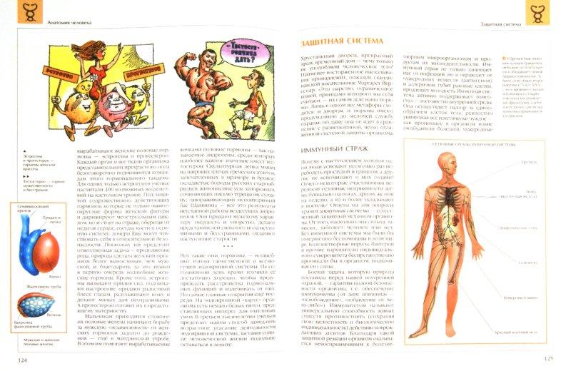 Иллюстрация 1 из 14 для Анатомия человека | Лабиринт - книги. Источник: Лабиринт