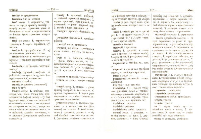 Иллюстрация 1 из 7 для Новый польско-русский и русско-польский словарь | Лабиринт - книги. Источник: Лабиринт