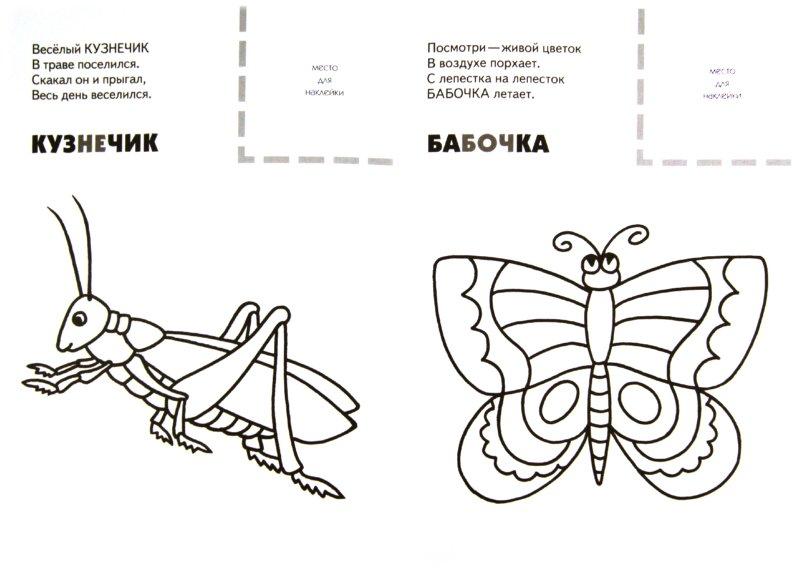 Иллюстрация 1 из 7 для Назови, раскрась, наклей: Насекомые - Бурмистрова, Мороз   Лабиринт - книги. Источник: Лабиринт