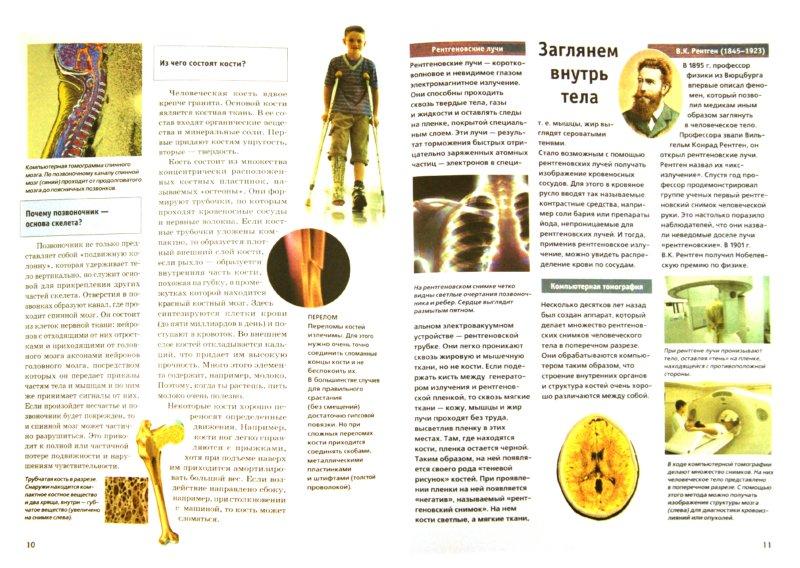 Иллюстрация 1 из 15 для Зачем и почему. Тело человека - Бляйх, Бляйх | Лабиринт - книги. Источник: Лабиринт