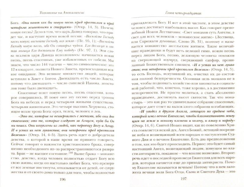 Иллюстрация 1 из 22 для Толкование на Апокалипсис - Даниил Священник | Лабиринт - книги. Источник: Лабиринт