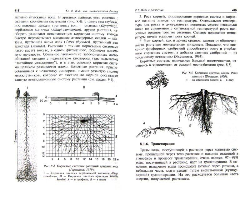 Иллюстрация 1 из 15 для Введение в экологию растений. Учебное пособие - Афанасьева, Березина   Лабиринт - книги. Источник: Лабиринт