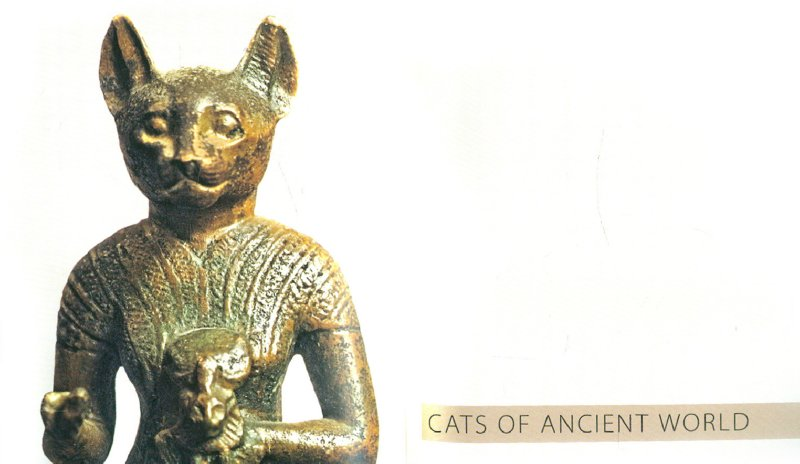 Иллюстрация 1 из 9 для The Hermitage. Cats | Лабиринт - книги. Источник: Лабиринт